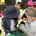 kindergarten tarneit north