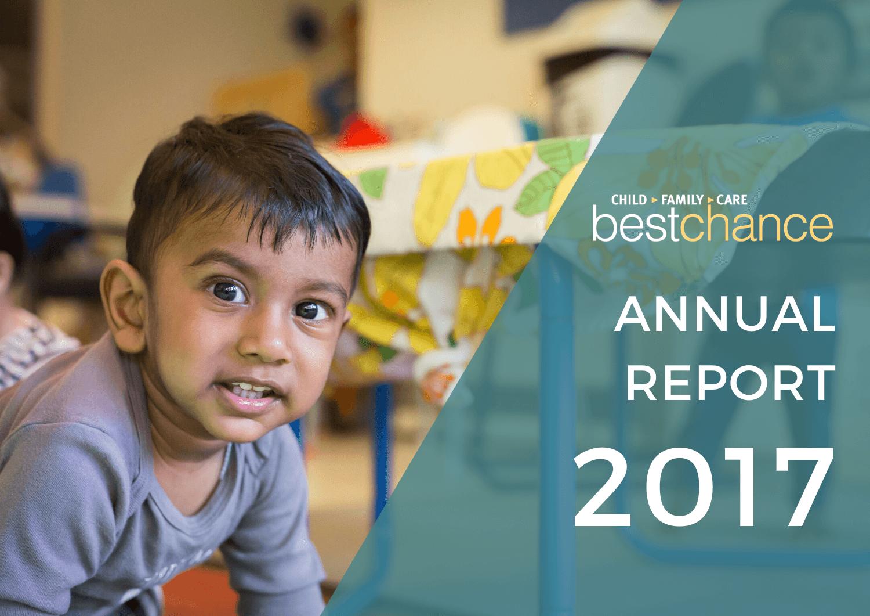 ANNUAL REPORT2017