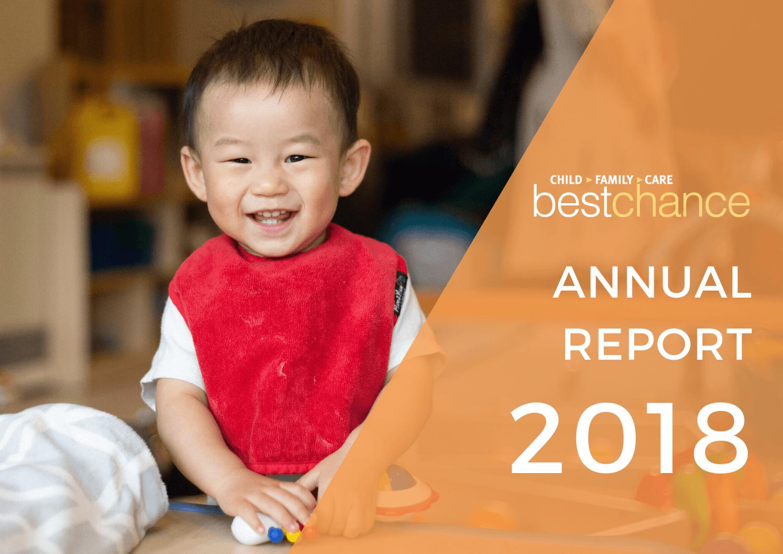 ANNUAL REPORT2018 (2)