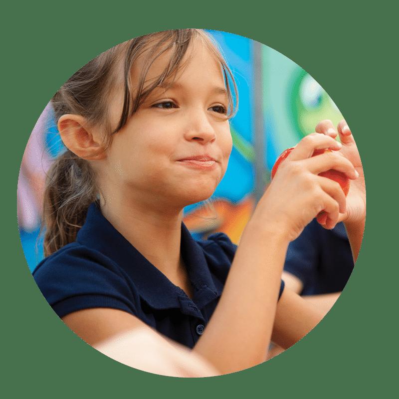 Cert III Education Support