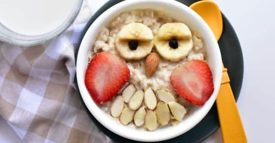 Owl oat bowls